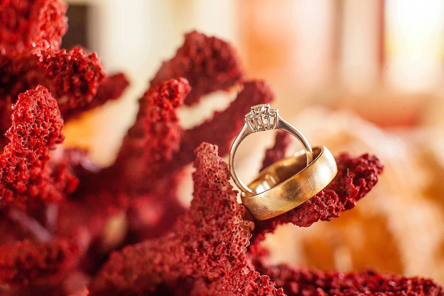Kaanapali Coffee Farms Wedding | Maui Wedding Photographer_0005