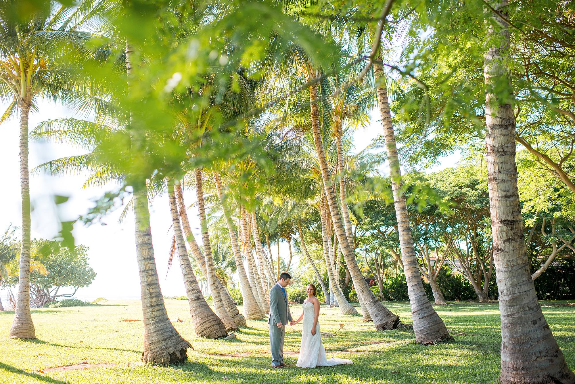 bride and groom standing in rows of palm trees