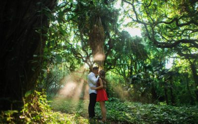 Engagement Session in Kapalua   Donna + Rin