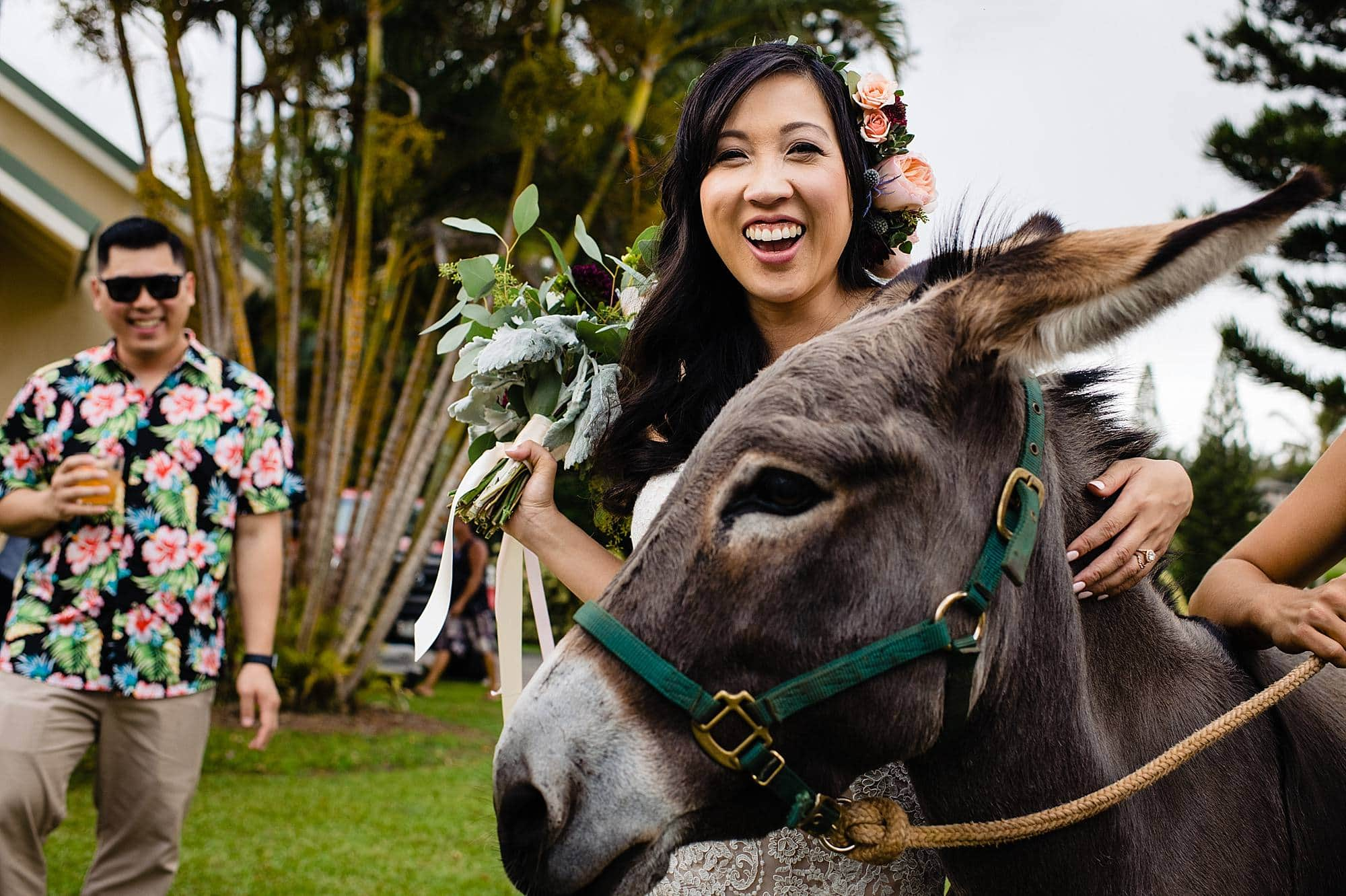 bride with donkey during cocktail hour