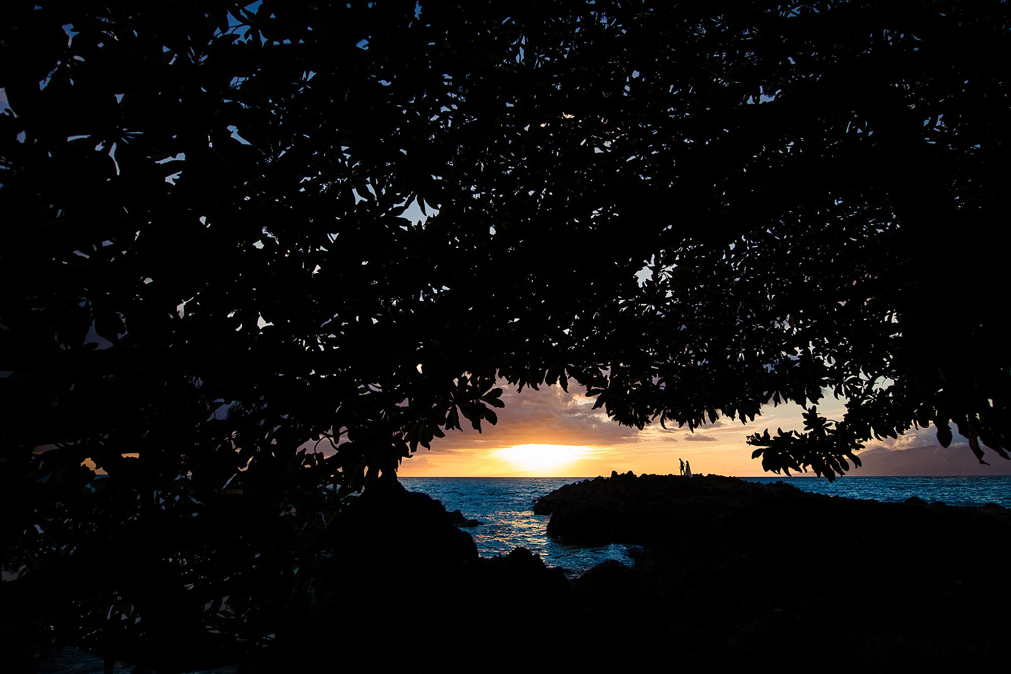 sunset wedding portraits at Kukahiko estate