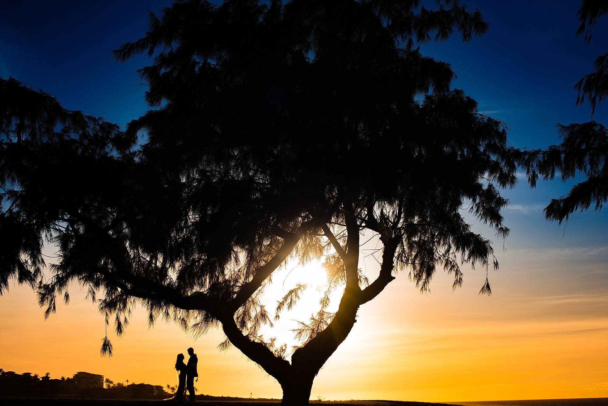 stylish ritz carlton kapalua wedding