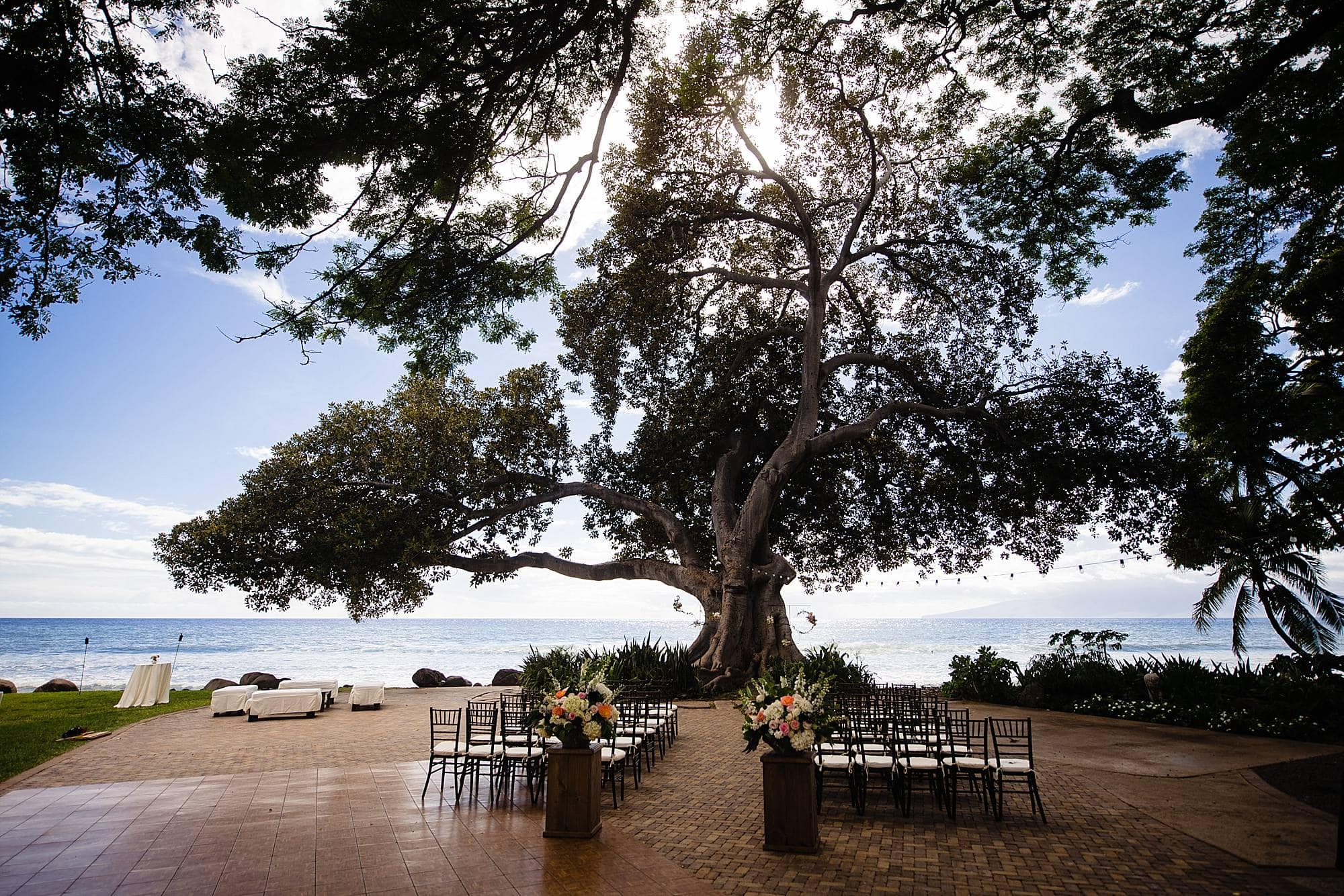 wedding ceremony under large tree at Olowalu Plantation House