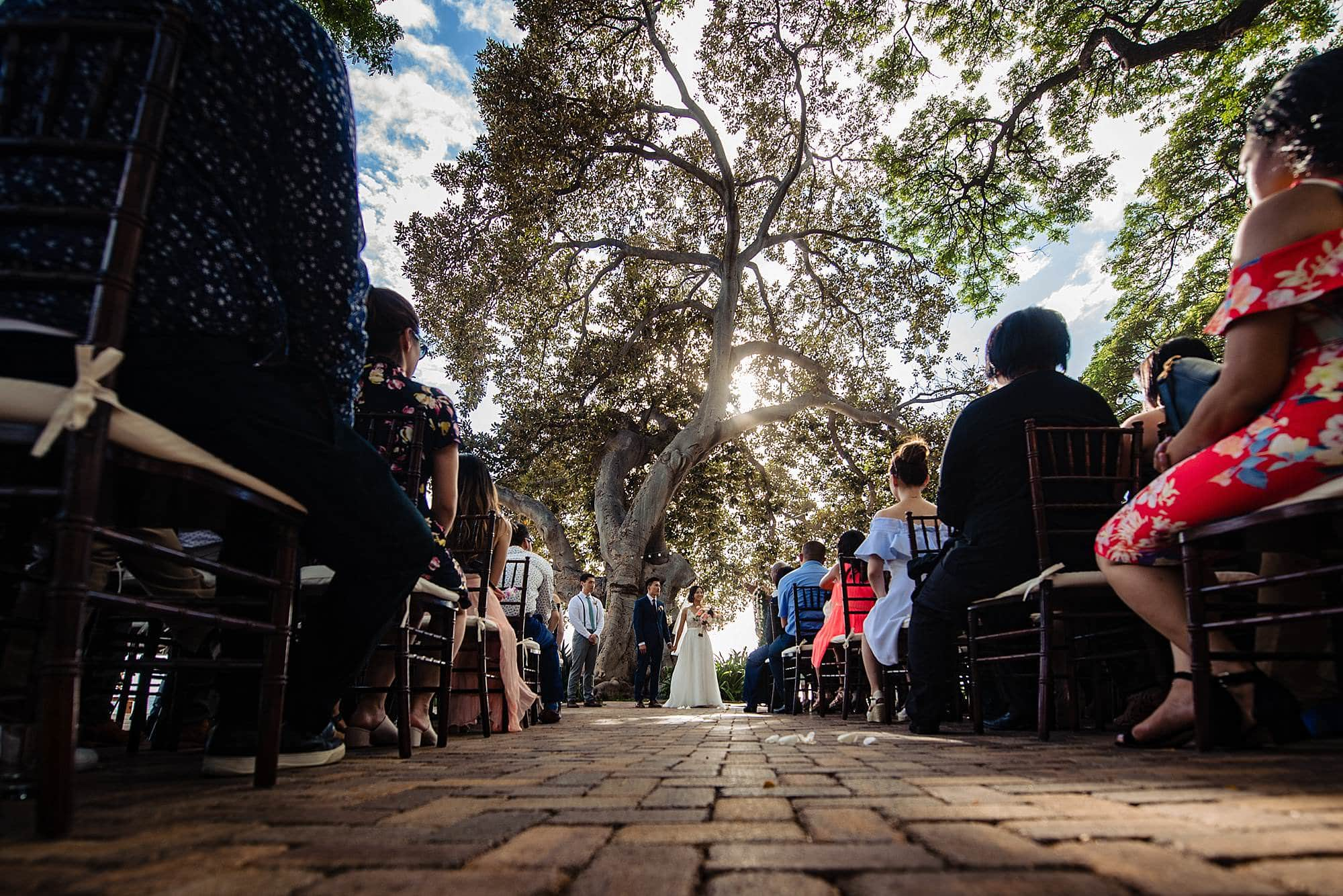 ceremony at Olowalu Plantation House under tree